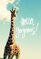 Hello Gorgeous Giraffe Fine Art Print
