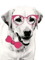 Pink Pop on Pup Fine Art Print