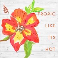 Tropic Like It's Hot Fine Art Print
