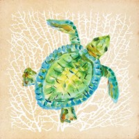Sealife Turtle Fine Art Print