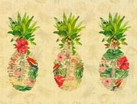 Triple Tropical Pineapple Collage Fine Art Print