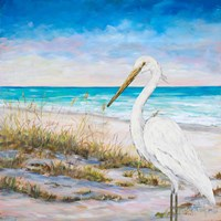 Egret on the Beach Fine Art Print