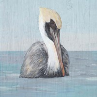 Pelican Wash II Fine Art Print
