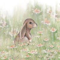 Meadow Visitor III Fine Art Print