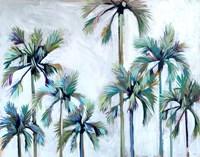 Palms after Sunset Fine Art Print