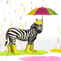Raindrops Safari Zebra Fine Art Print