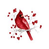 Winter Cardinal in Red I Fine Art Print