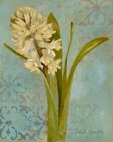 Hyacinth on Teal I Fine Art Print