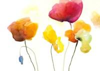 Friendly Tulips Fine Art Print