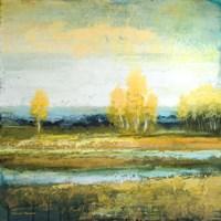 Marsh Lands I Fine Art Print