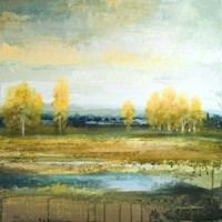 Marsh Lands II Fine Art Print