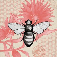 Bee on Pink Flower Square Fine Art Print