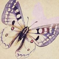 Lavender Butterfly on Cream Fine Art Print