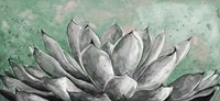 Gray Agave on Green Fine Art Print