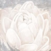 White Grey Flower II Fine Art Print