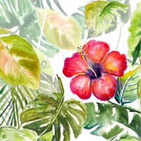 Hibiscus on Selva Fine Art Print