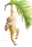 Monkeys in the Jungle I Fine Art Print