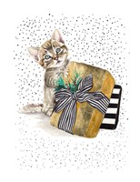 My Cute Present II Fine Art Print