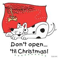 Don't Open til Christmas I Fine Art Print