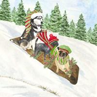 Dog Days of Christmas III Sledding Fine Art Print