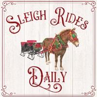 Vintage Christmas Signs V-Sleigh Rides Fine Art Print