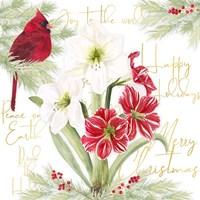 Merry Amaryllis II Fine Art Print