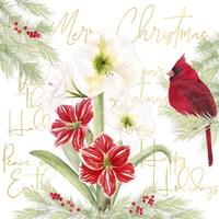 Merry Amaryllis III Fine Art Print