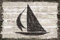 Driftwood Coast II Framed Print