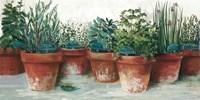 Pots of Herbs II White Fine Art Print