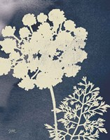 Dark Blue Sky Garden IV Fine Art Print