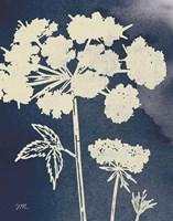 Dark Blue Sky Garden III Fine Art Print