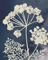 Dark Blue Sky Garden II Fine Art Print
