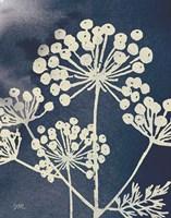 Dark Blue Sky Garden I Fine Art Print