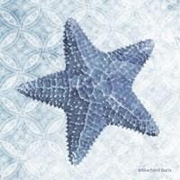 Starfish I Fine Art Print