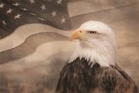 US Symbols Fine Art Print