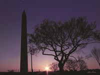 Nightfall at the Washington Monument Fine Art Print