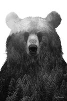 Black & White Bear Fine Art Print