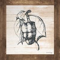 Petals on Planks - Pepper Fine Art Print