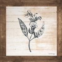 Petals on Planks - Sage Fine Art Print