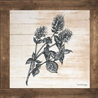 Petals on Planks - Mint Fine Art Print