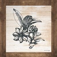 Petals on Planks - Anise Fine Art Print
