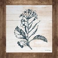 Petals on Planks - Mustard Fine Art Print