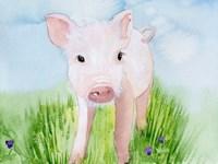 Baby Spring Animals V Fine Art Print