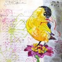 Happy Bird IV Fine Art Print
