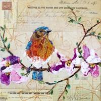 Happy Bird V Fine Art Print