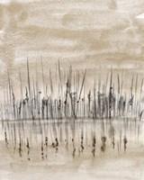 Marshline Reflection II Fine Art Print