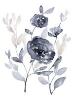 Peonies in Grey II Fine Art Print