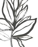 Leaf Instinct I Fine Art Print