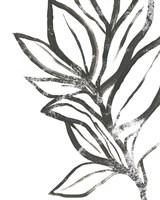 Leaf Instinct II Fine Art Print