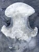 Indigo Jellyfish II Fine Art Print
